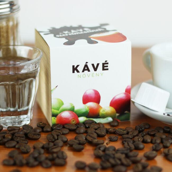 Kávé növény - A kávé szerelmeseinek