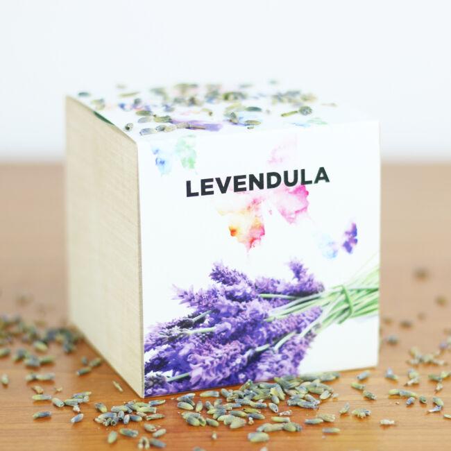 Levendula - Csak nyugi, lépj tovább!
