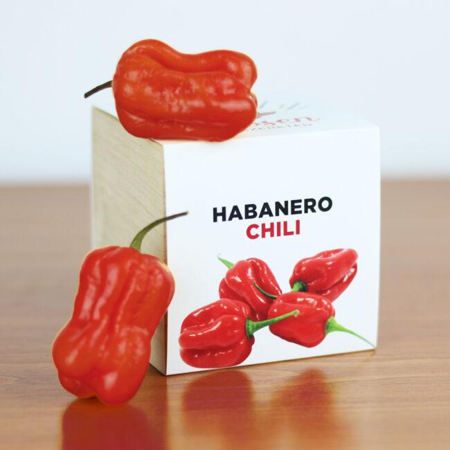 Chili - Ha csípősen szereted