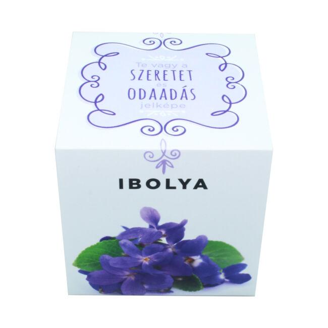 Ibolya - Te vagy a szeretet és odaadás jelképe