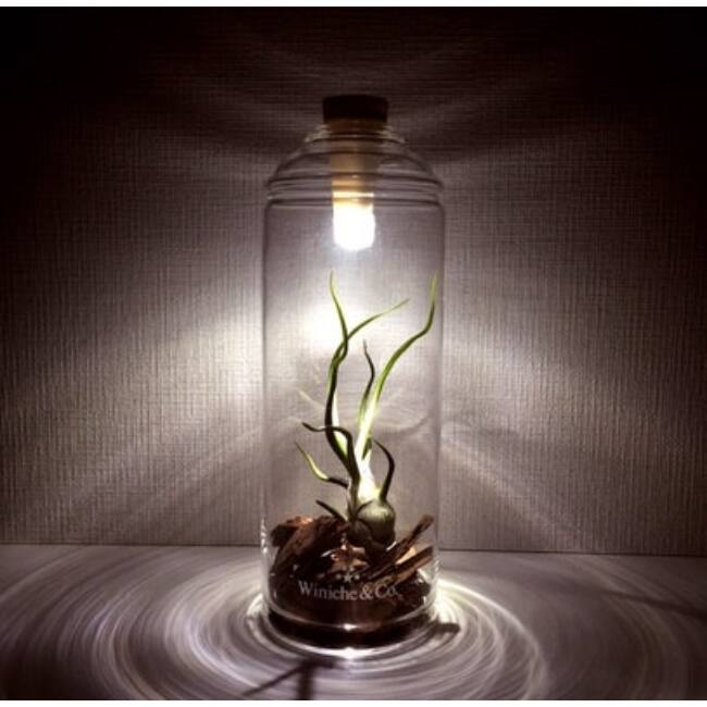 LED-es világító dugó - fehér