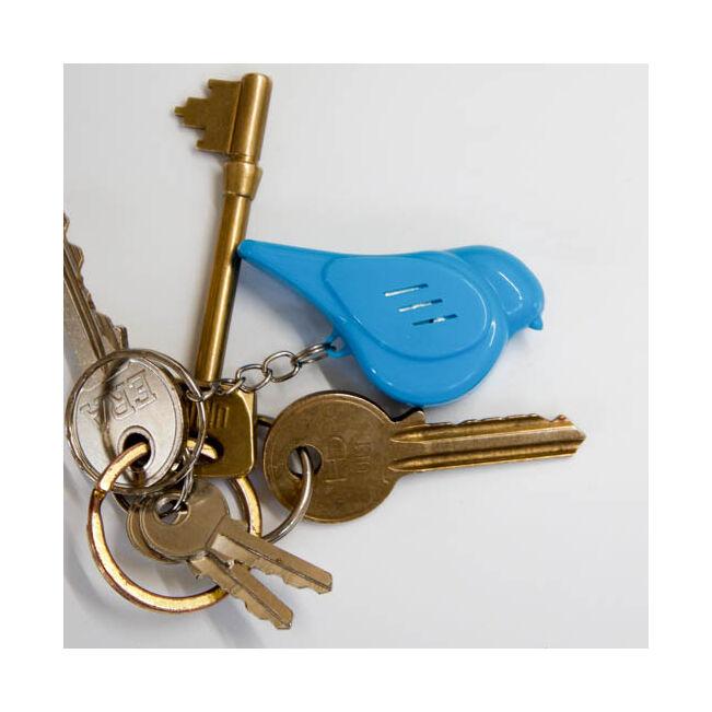 Fütyülős kulcskereső madár