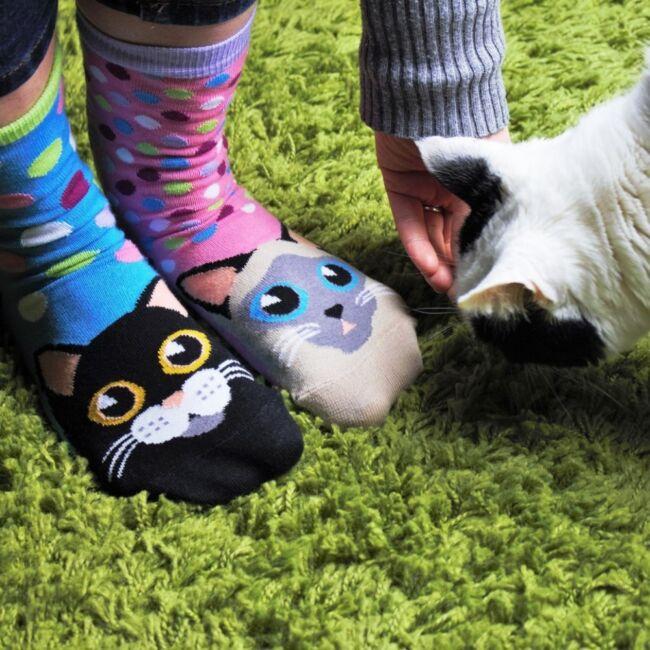 Cica zokni szett - 6 db különböző mintájú zokni
