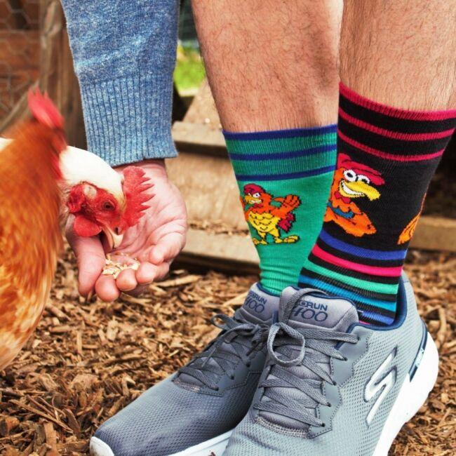 Oddcocks zokni szett - 6 db különböző mintájú zokni