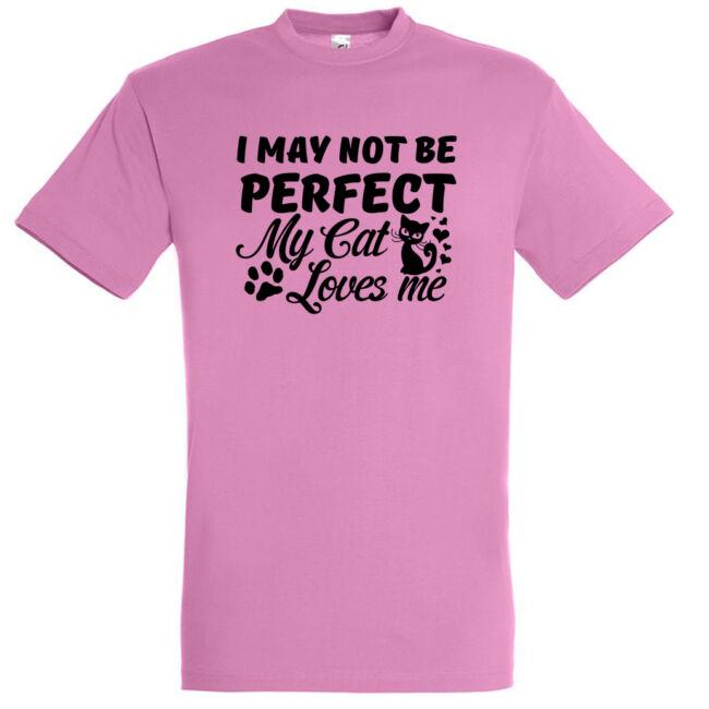I may not be perfect póló több színben
