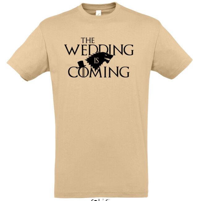 Winter is coming legénybúcsú póló több színben