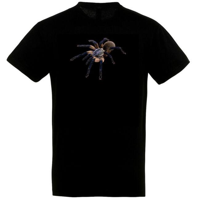 Monocentropus balfouri, madárpókos póló, fekete színben
