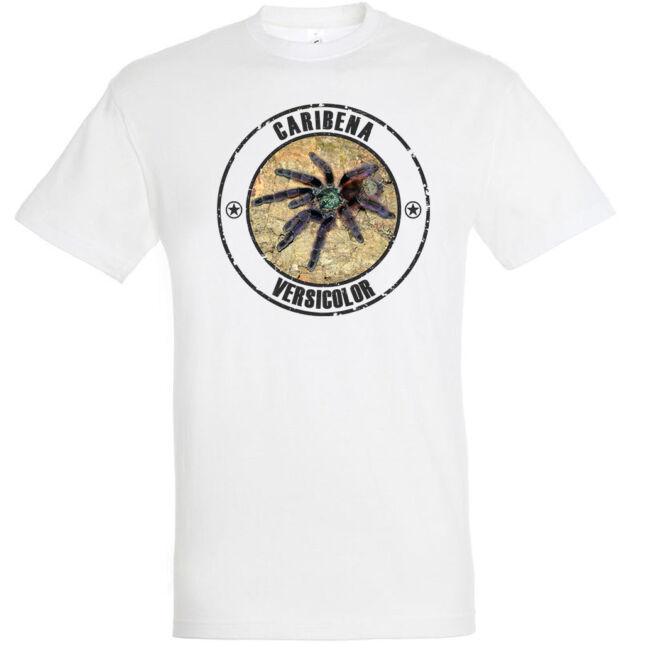 Caribena versicolor, madárpókos póló, fehér színben